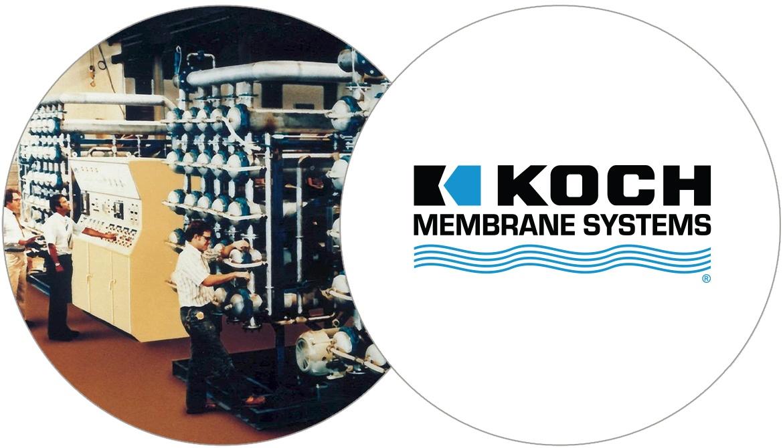 company logo of 1981